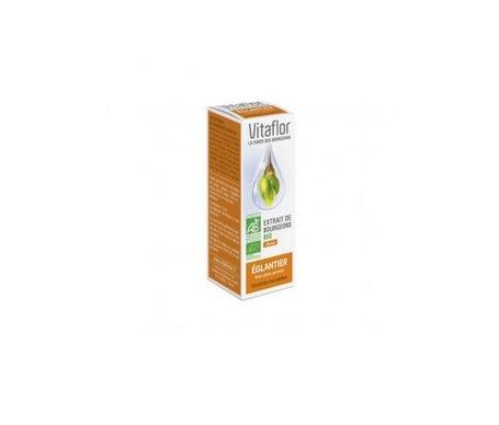 Vitaflor Extrait de Bourgeons Bio Eglantier 15 mL